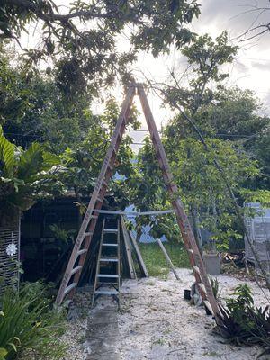 14ft ladder for Sale in Fort Lauderdale, FL