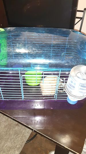 Hamster male and food and cage for Sale in Brooklyn, NY