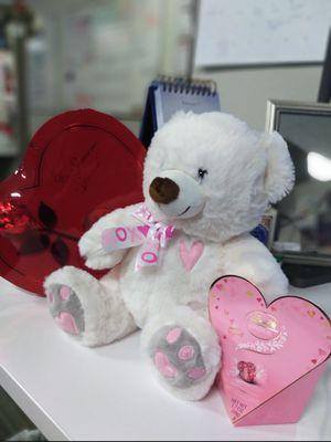Teddy for Sale in Hayward, CA