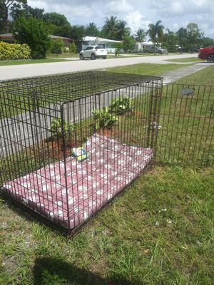 crate dog x large. 43 long 30 wide 30 height two exits for Sale in Fort Lauderdale, FL