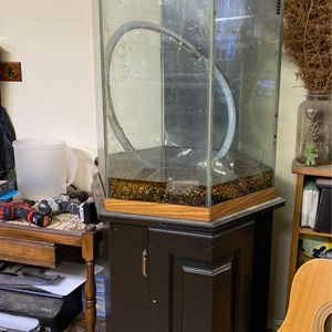 35 gallon hexagon fish tank and stand with pump accessories for Sale in Bloomington, IL