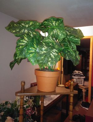 Decorative fake plant for Sale in St. Louis, MO