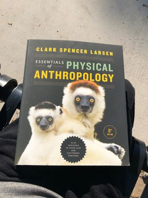 Essentials of physical anthropology third edition for Sale in Phillips Ranch, CA