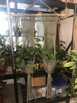 Double Macrame Plant Hanger in Green for Sale in Peoria, AZ