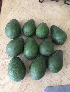 Avocadoes for Sale in Lakewood, CA