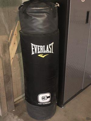 Everlast Punching Bag, Bag Hanger, black training gloves & pink women's boxing gloves for Sale in Westchester, IL