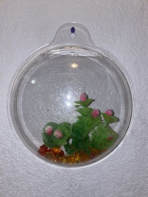 Small hanging plastic fish tank for Sale in North Las Vegas, NV