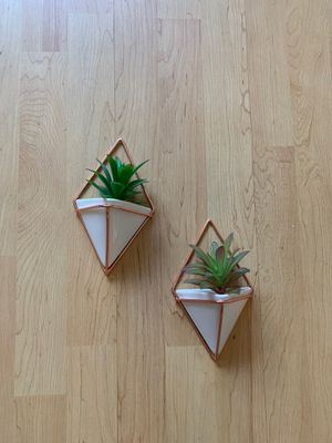 Wall plant holders for Sale in San Diego, CA