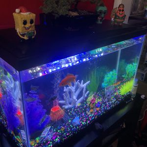 Fish Tank 30 Gallons for Sale in South Gate, CA