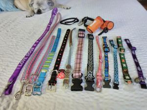 Dog and Cat leashes and Collars. Star Wars to Martha Stewart Pets. Leashes $3.00 each, Collars $2.00 each, 3/$5.00. Sleeping Pug, not for sale ♥️! for Sale in Vancouver, WA