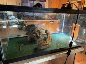 Nice snake cage for Sale in Las Vegas, NV