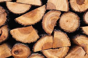Burning wood for sale - per truck for Sale in Binghamton, NY