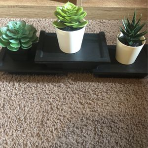 Shelves And Fake Succulents for Sale in Mesquite, TX
