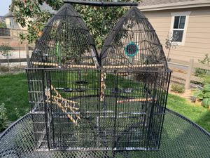 Cast Iron Pottery Barn bird cage for Sale in Lafayette, CO
