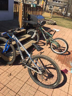 Mountain Bike (Custom) for Sale in Fox Lake, IL