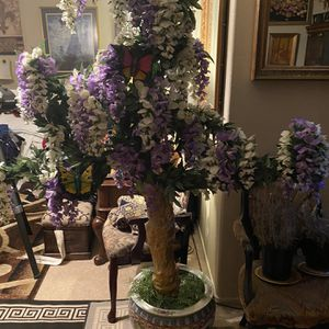 Tree for Sale in Henderson, NV