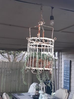 Antique bird cage with succulent for Sale in Richmond, TX