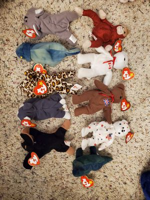 Teeny Beanie Babies for Sale in Fenton, MO