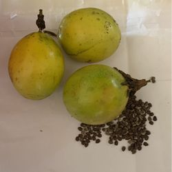 Passion Fruit Seeds for Sale in Haines City,  FL