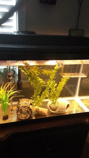 20 Gallon Fish Tank/Aquarium for Sale in American Canyon, CA