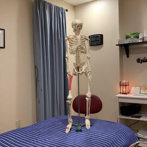 Skeleton for Sale in Monroeville, PA