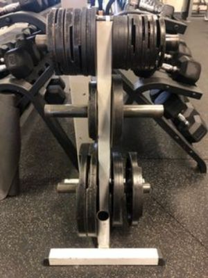 Body Solid Olympic Plate Weight Tree for Sale in Silver Spring, MD