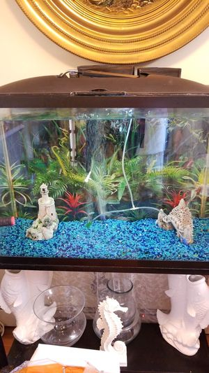 large fish tank for Sale in Boston, MA
