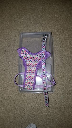 Dog harness & collar for Sale in Arlington Heights, IL
