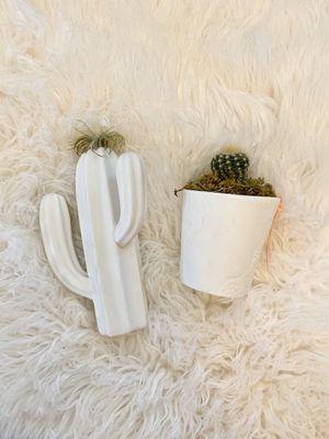2 Small White Ceramic Succulent Planters for Sale in Sierra Vista, AZ