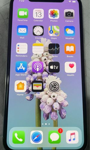 iPhone X 256GB for Sale in Nashville, TN