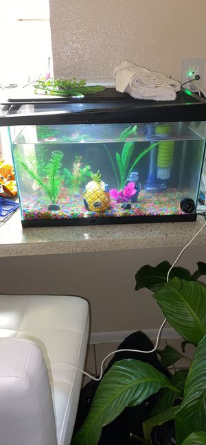 Aquarium and more holds 5-8 gallon for Sale in Orlando, FL