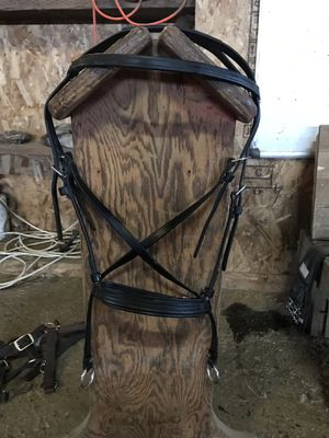 Dr cook bitless bridle for Sale in Puyallup, WA