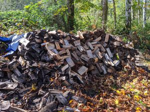 Dry Seasoned fire wood 1.5 to 2 cords all for $400 for Sale in Arlington, WA