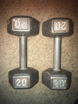 (2) 20 lb hex dumbbells 💪🏼 for Sale in Las Vegas, NV