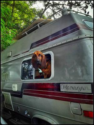 1987 Chevrolet Okanagon high top camper van 159k original miles for Sale in Seattle, WA