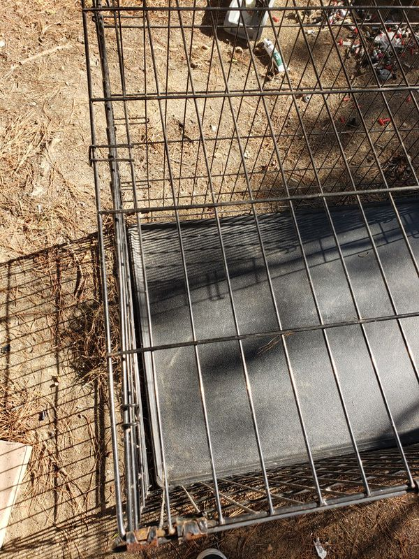 Fold and carry dog crate 20$ large dogs 32in long 25 in tall