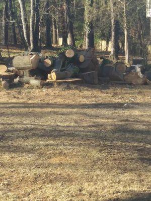 Free oak wood for Sale in Roanoke, VA