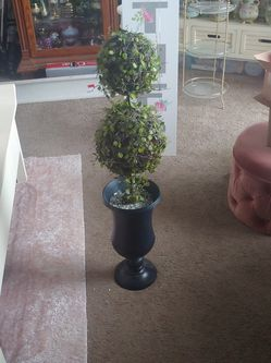Pottery Barn Topiary Tree! for Sale in Lowell,  MA