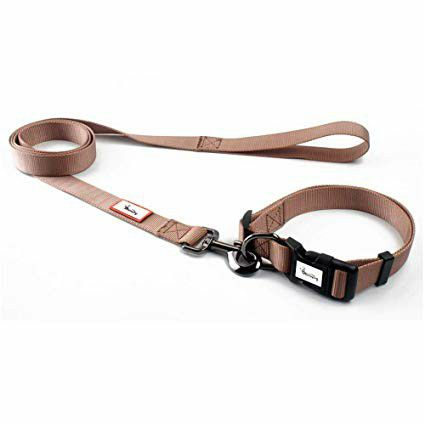Selling dog collars and Leash