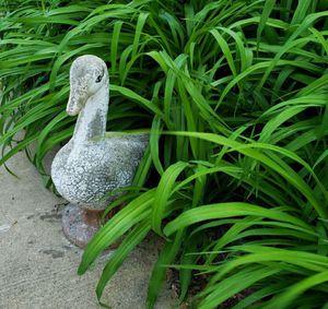 Vintage garden goose! for Sale in Woodridge, IL