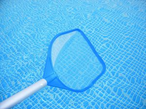 Pool cleaning services for Sale in Tampa, FL