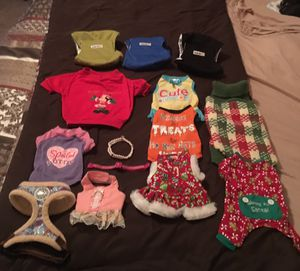 Toy dog clothes, training pants for male dogs and collars for Sale in Raleigh, NC