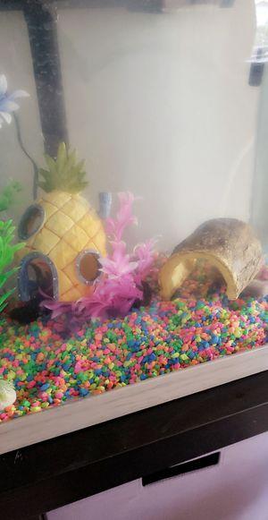 Fish tank for Sale in Vernon, CA