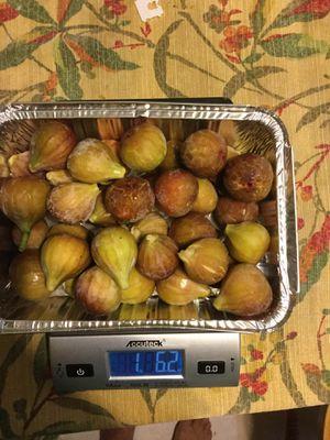 Figs organic local for Sale in Matthews, NC