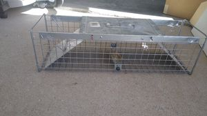 Squirrel Trap for Sale in Arvada, CO