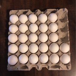 Free Eggs for Sale in Chicago,  IL