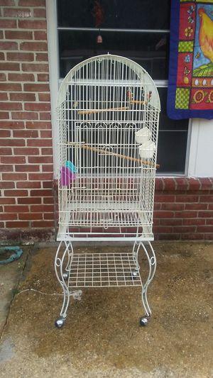 Bird cage for Sale in Milton, FL