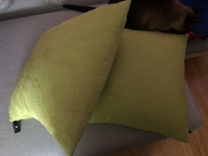 Pair of beautiful throw pillows for Sale in El Sobrante, CA