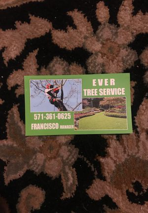 Tree service for Sale in Manassas, VA