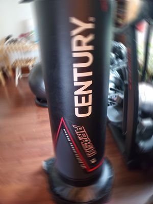 MMA or Boxing up right punching bag for Sale in Cleveland, OH